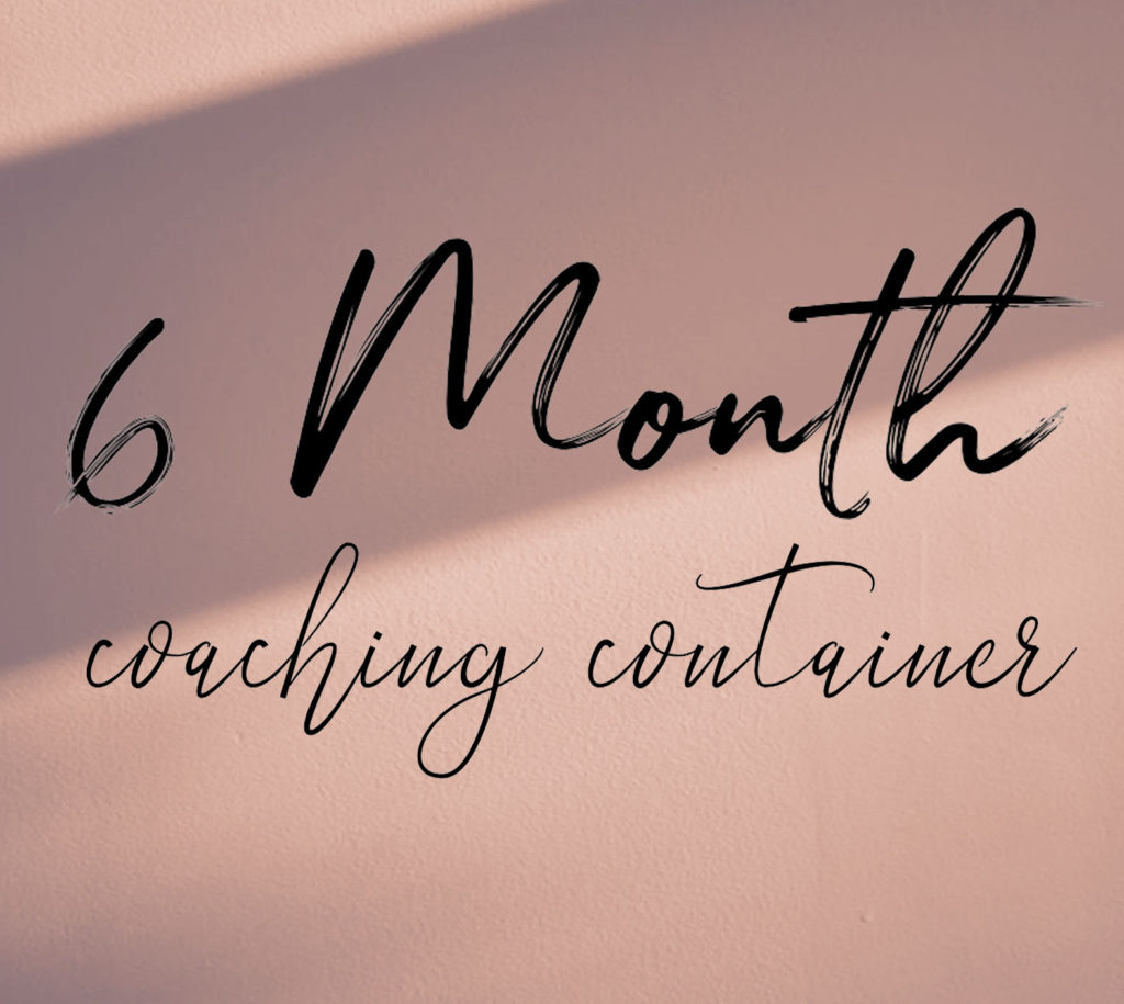 6 month coaching container